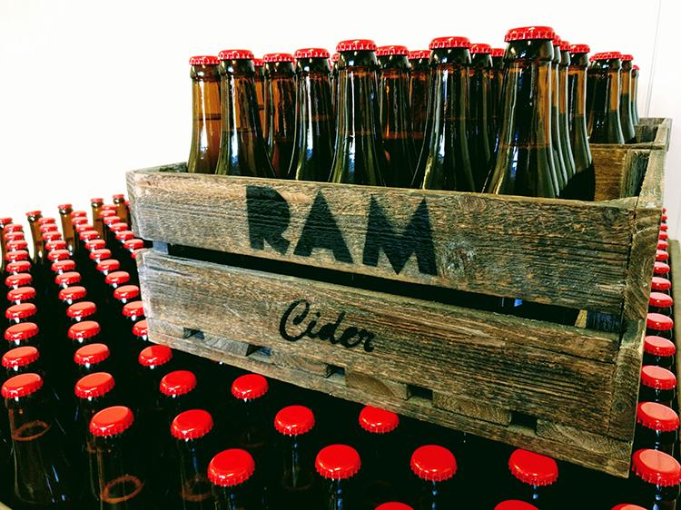 Ram1.jpg#asset:877